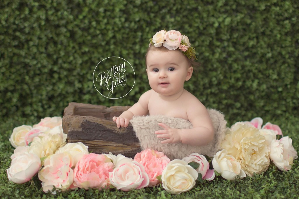 Cleveland Baby Photographer Caterina 6 Months