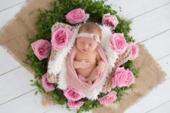 Newborn Baby | Introducing Chloe