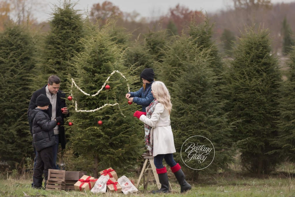 Christmas Tree Farm Photography.Christmas Tree Farm Photo Shoot The Berger Family